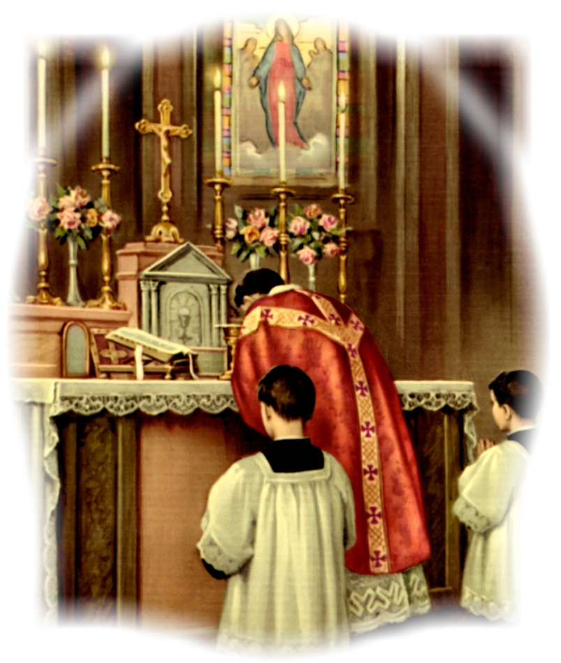 Why the Traditional Latin Mass? The New Mass is condemned by its own nature and by its fruits. The crisis in the Church will continue to worsen until we return to orthodoxy and discipline….